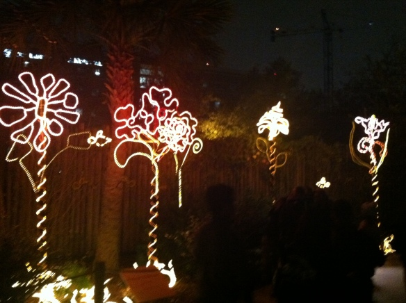 More zoo lights.